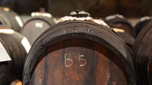 During our Bologna Cooking Vacation we cannot miss a visit to a Balsamic Vinegar producer in Modena