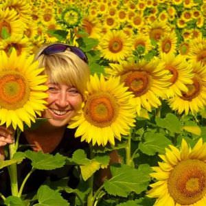 A photo opportunity among sunflowers under the Tuscan sun can never be passed up