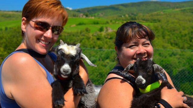 Going off the beaten path in the Tuscan hills to learn about the goats that help make beautiful cashmere products