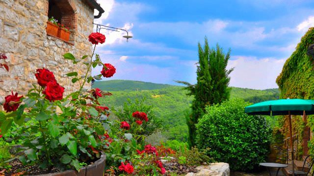 Our Chianti vacation features some of the best views Tuscany and Italy in general have to offer
