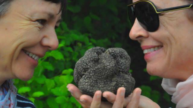 In Norcia, we have the opportunity to hunt for black truffles with locals. This is a unique activity to Umbria