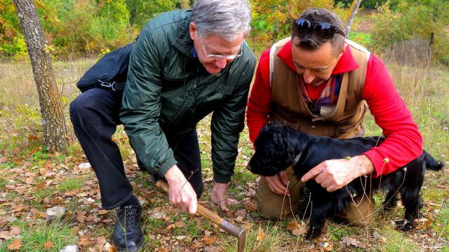 We spend the day with local truffle hunters and their award winning dogs during our Norcia vacation in Umbria