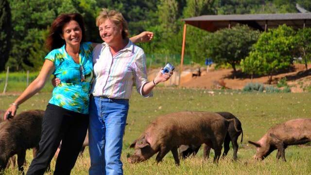 A foodie week in Norcia cannot miss a visit to a local free range pigs farm