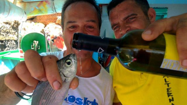 Our boat captains, Michele and Rosario are such gracious hosts - even to the fresh catch! Just part of Favignana f